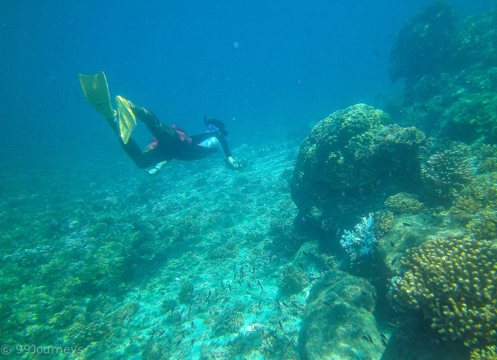 Isla de Coiba Panama