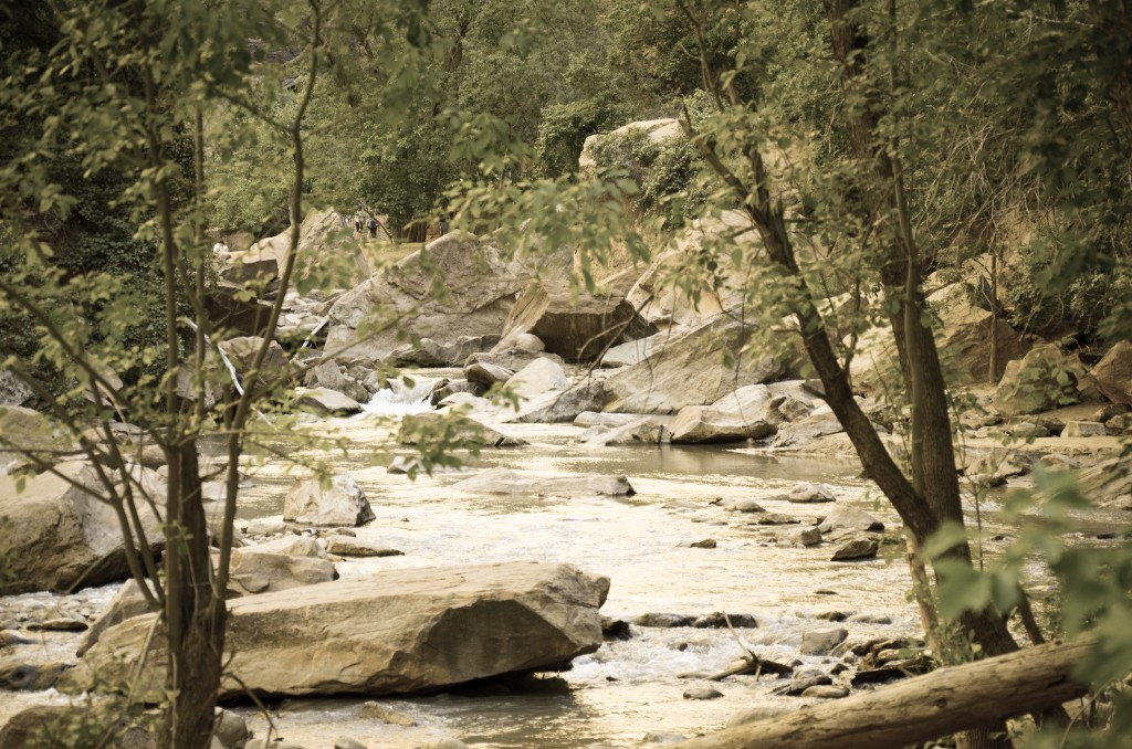 99Journeys Reise-Blog Reisetipps Reiseberichte Insider Tipps - USA Westküste Zion Nationalpark Zion Nationalpark