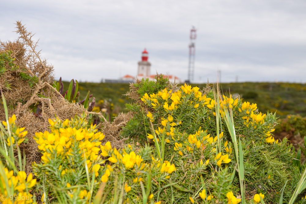 Reisetipps Portugal Algarve