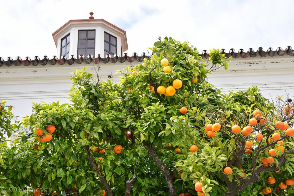 Reisetipps Portugal Lissabon Algarve-94
