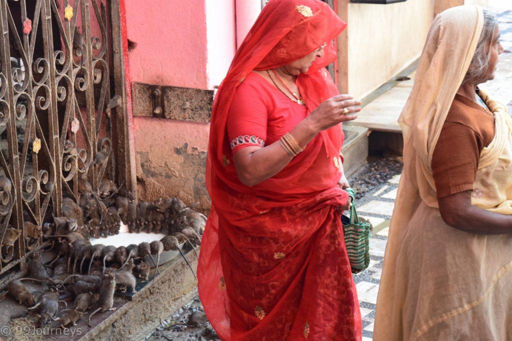 Reisetipps und Reiseberichte Indien - Rajasthan - Bikaner - Deshnok