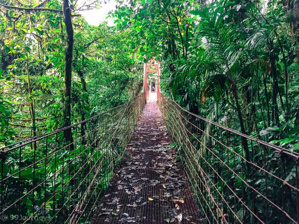 Costa Rica Rundreise Blog Monteverde